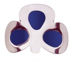 More about Coloured Shamrock Buckles: Blue