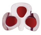 More about Coloured Shamrock Buckles: Red
